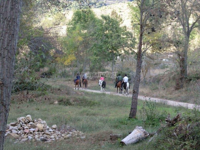 Paseo a caballo por Morella