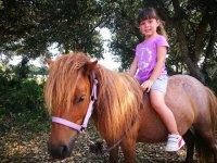 Paseo en pony para niños