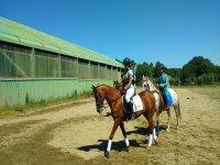 Vuelta al establo con los caballos