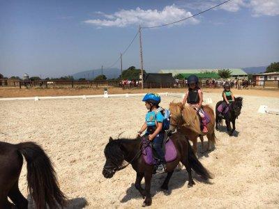 Campamento equitación en Vidreres 3 semanas verano