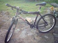 自行车列表内华达内华达山脉景观