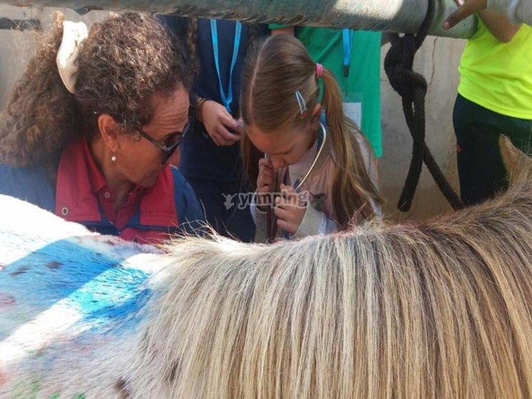 Campamento de equitación en Girona
