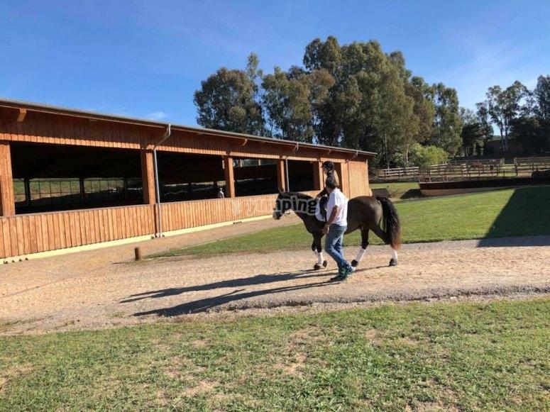 Paseando a caballo por la finca