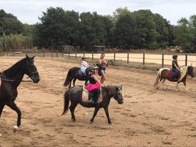 Campamento equitación Vidreres 1 semana con comida