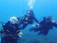 在Calahonda进行的潜水指导30分钟
