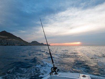 Innovar Events Pesca