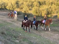 Horse riding through Vega del Guadalquivir 1 hour
