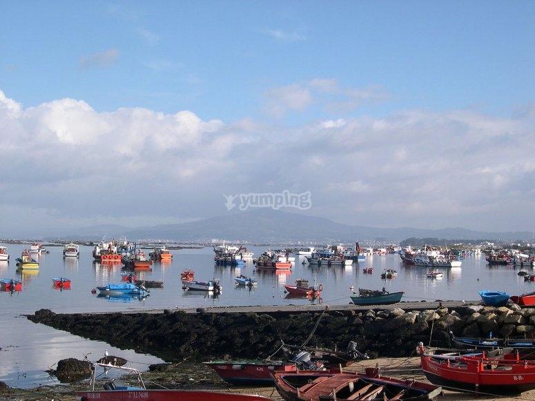 Barche a Puerto de Arousa