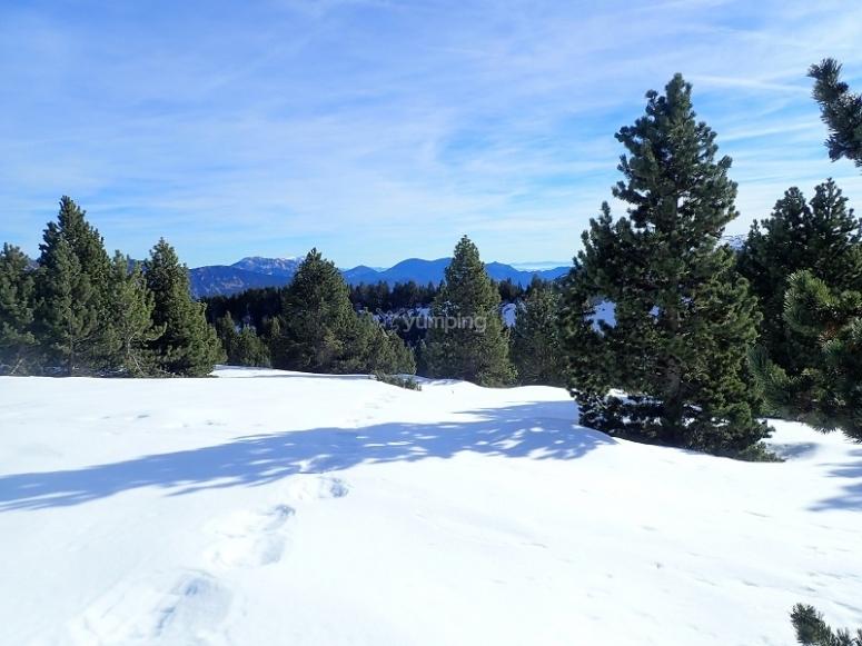 冬季的山地景观