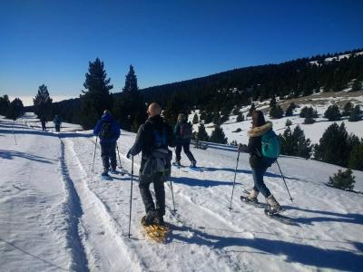 Snowshoeing team building Port del Comte 7h