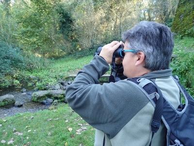 Ornitologia a La Garrotxa per team building 5h