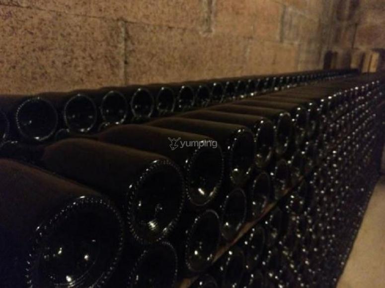 我们酒庄的葡萄酒