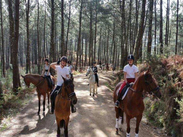 Equestrian walk through Galician forest