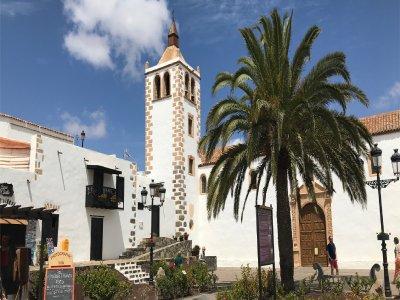 Fuerteventura tour and visit to Aloe Vera museum