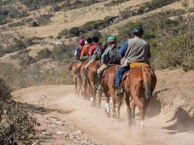 Excursión a caballo entre vacas pajunas El Torcal