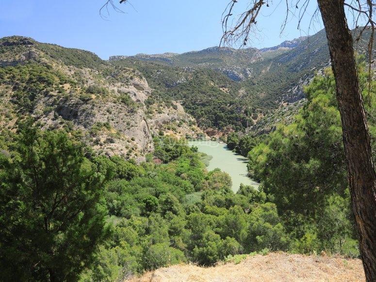 Paraje idílico en la localidad de Antequera