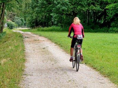 Camping Puente Nuevo Alquiler de Bicicletas