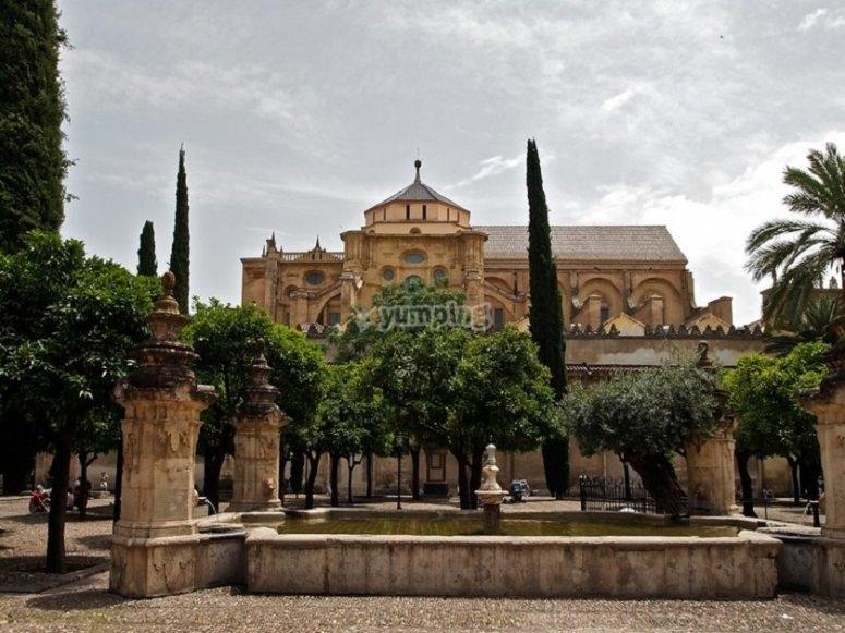 Durante il tuo viaggio in mongolfiera puoi vedere i diversi giardini e spazi verdi della città andalusa