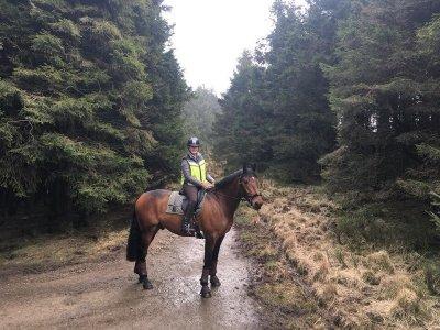 Horseback route advanced level Maresme 1h 30 min
