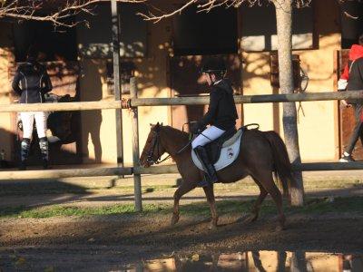 Pony ride in Orrius farm 40 minutes