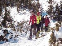 Tour por Navacerrada con raquetas de nieve