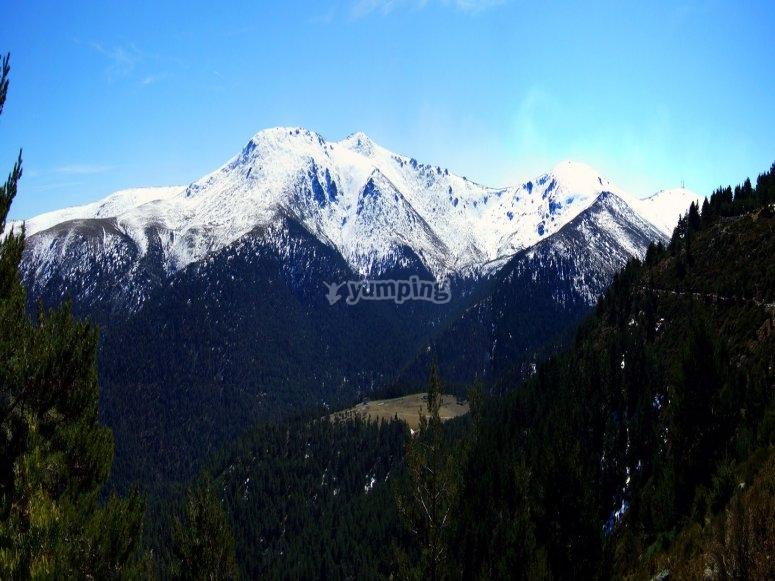 Paisaje nevado de Navacerrada