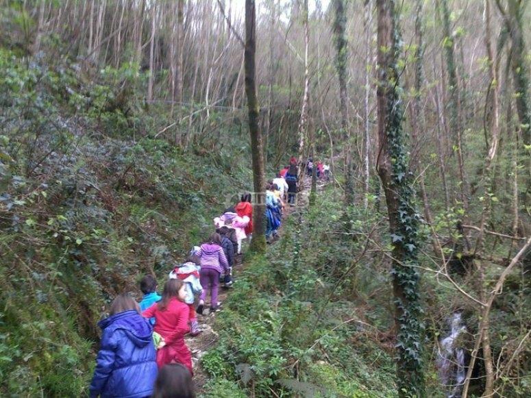 森林中的方向