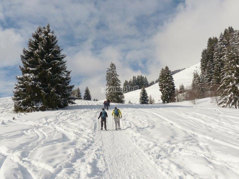 用雪鞋走路非常容易和舒适