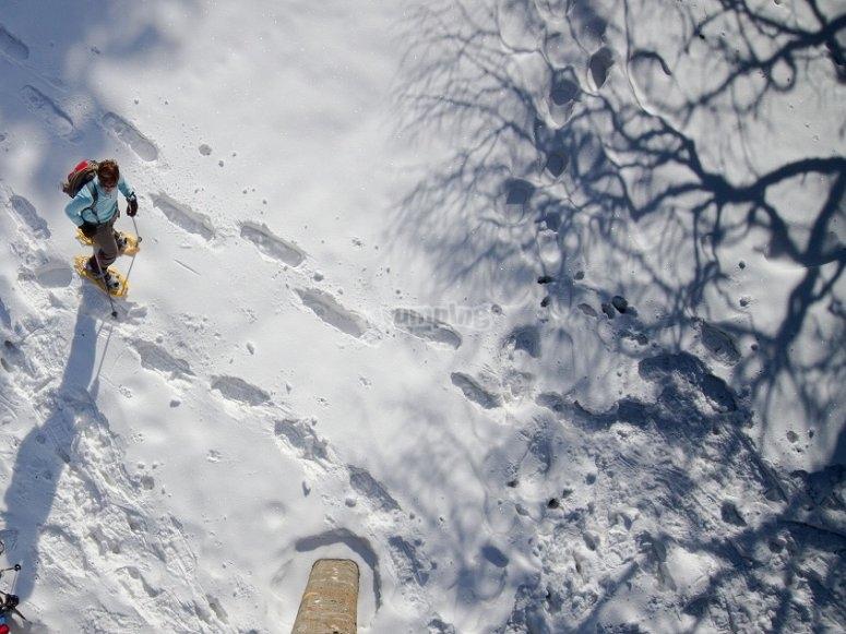 足迹在雪靴和拐杖的雪中。