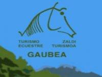 Gaubea
