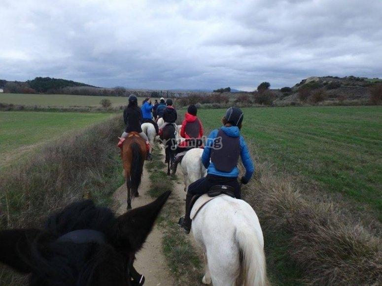 Passeggiate a cavallo su un terreno pianeggiante