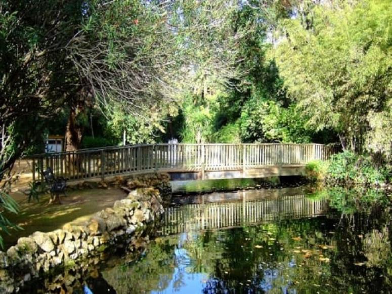 Vistas del Parque de María Luisa