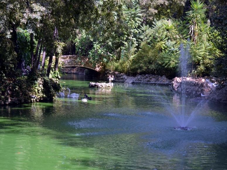 Visit to the Maria Luisa Park