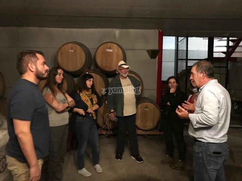 Cata de vino en Tomelloso