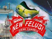 New Felusi Team Building