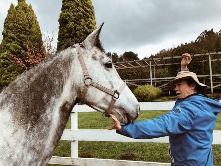 Our staff loves their work with horses