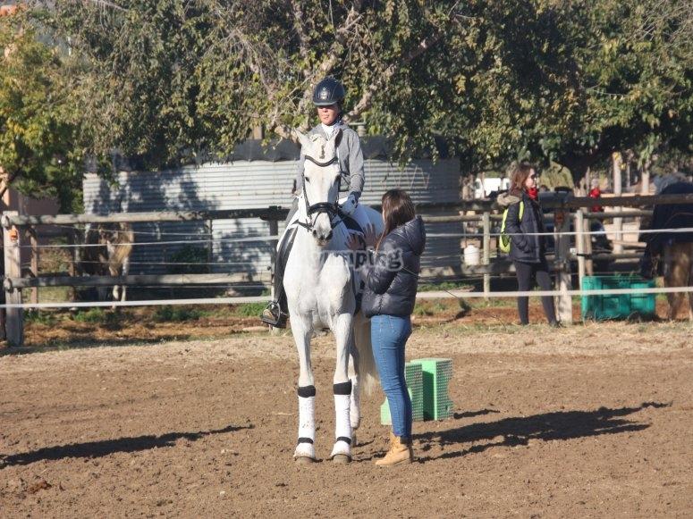 Orrius一周内的骑马-盛装舞步