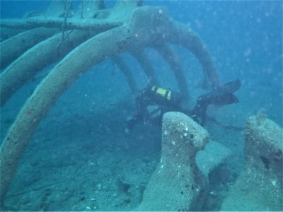 Double diving in Atlantida Park and wrecks