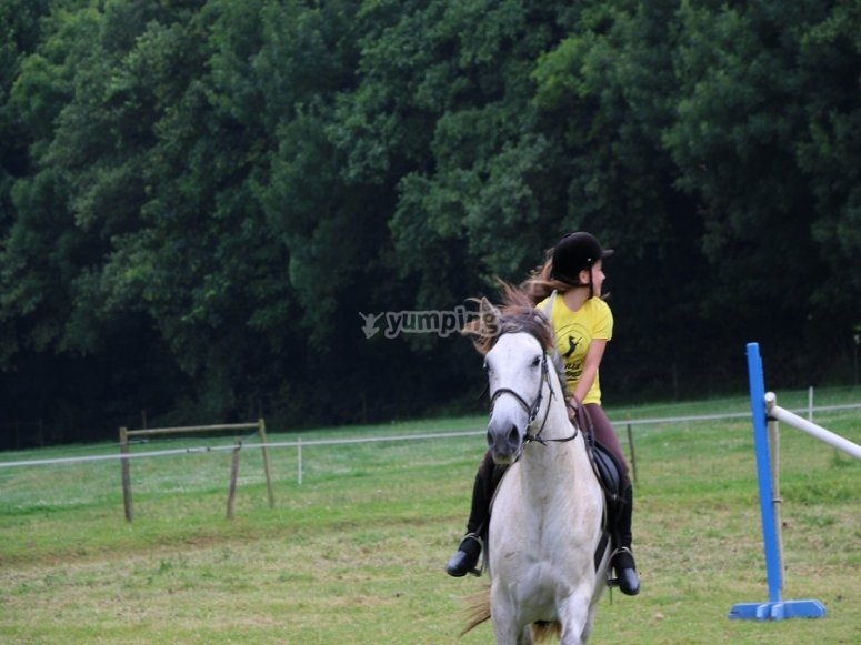 You will perform various exercises to practice with the horse