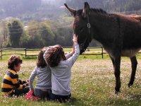 Los niños disfrutan conociendo a los animales