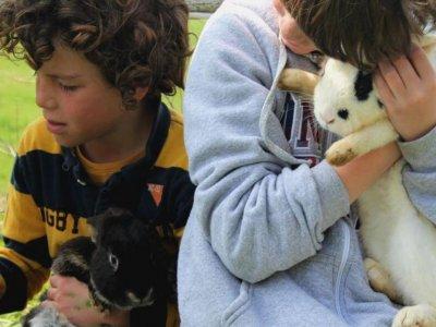 Cumpleaños infantil granja Ortigueira