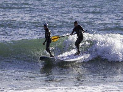 在阿尔库迪亚(Alcudia) 租冲浪板和划桨 1小时