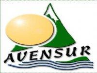 Avensur Team Building