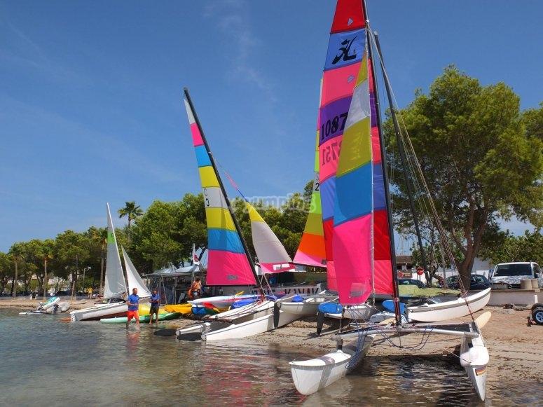 Flota de catamaranes
