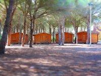 Cabañas zona Campobosco