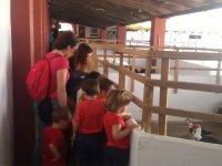Visitando la granja escuela