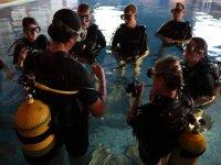 Aprendiendo de las inmersiones