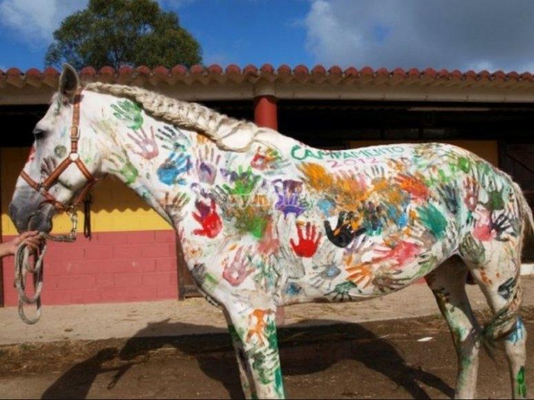 Nuestro caballo decorado por los chicos
