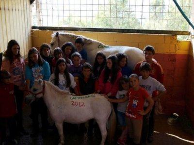 Summer riding camp in Pontecaldelas 1 week