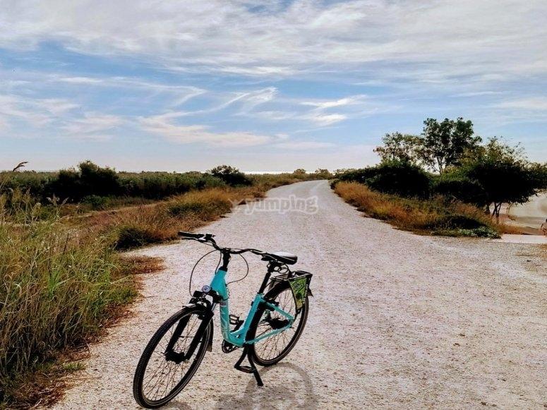 Alquiler bicicleta de paseo en Benalmádena
